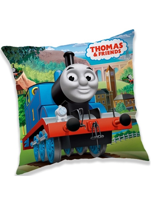 Thomas Tog decorpude 40 *40 cm