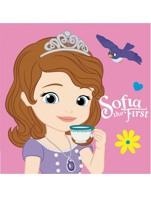 Disney Sofia decor pude